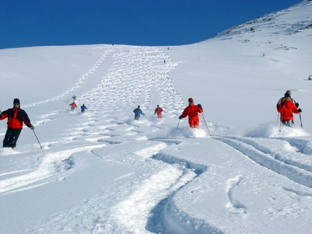чимган горнолыжный курорт фото