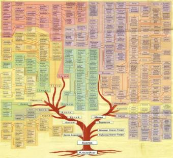 Происхождение кыргызов c точки зрения генеалогических сказаний (санжыра) и ДНК генеалогии