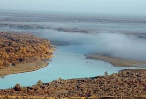 Ядовитые воды. Самая длинная река Средней Азии оказалась отравленной
