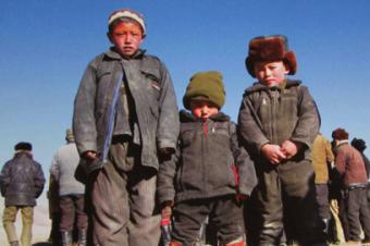 Власти против массового переселения афганских кыргызов