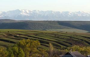 Парламент Казахстана запретил выделять земли иностранцам