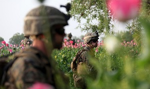 Военное присутствие США в Афганистане обеспечивает расширение международного наркобизнеса.
