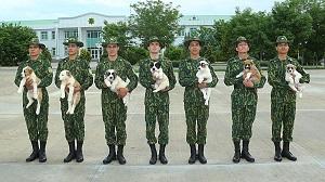 Туркменистан: всё идет псу под хвост
