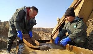 В прошлом году Узбекистан снял запрет на золотодобычу для частных лиц