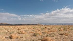 За две тысячи лет на территории приоритетной площадки строительства АЭС в Узбекистане сильных землетрясений не зафиксировано