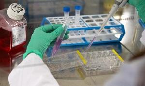Мигрантов для получения патента в РФ обяжут сдать тест на коронавирус